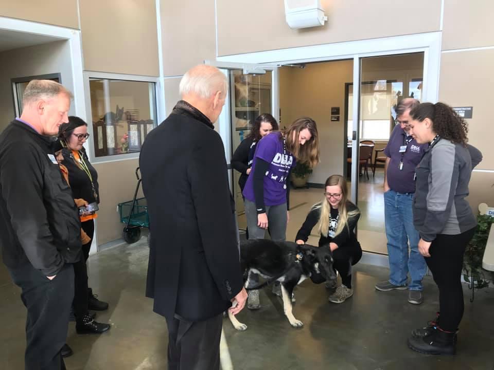 Primer perro rescatado presidencial