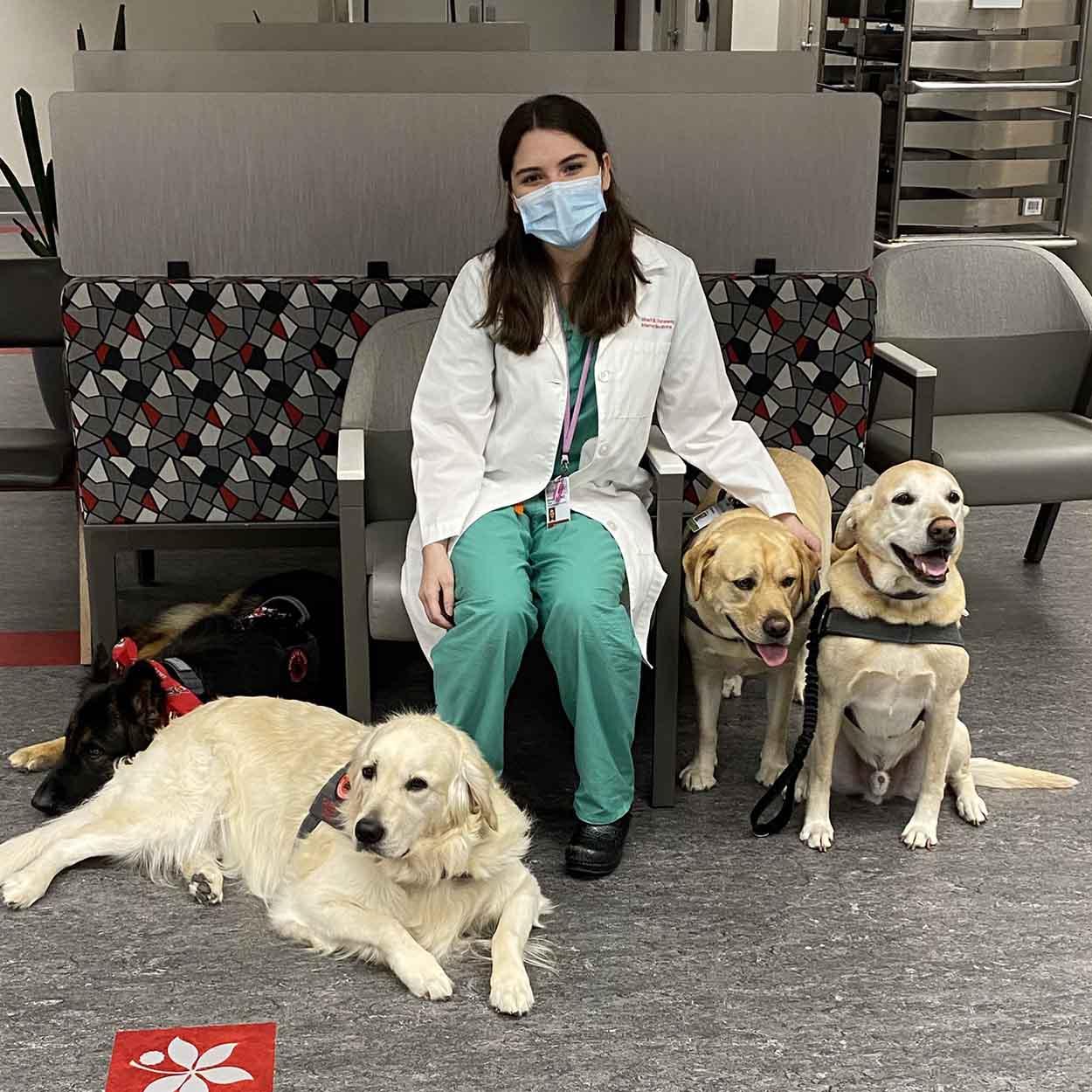 Hospital contrata perros para terapia