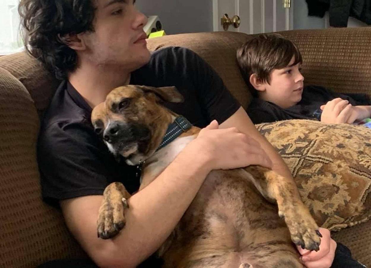 Perro es consentido por sus humanos