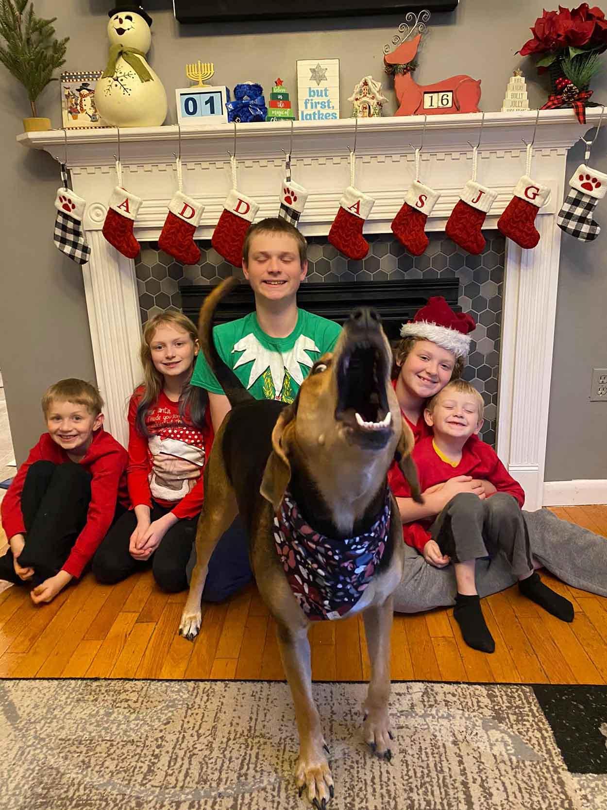 Perro salta cada que mamá toma una foto para la tarjeta de Navidad