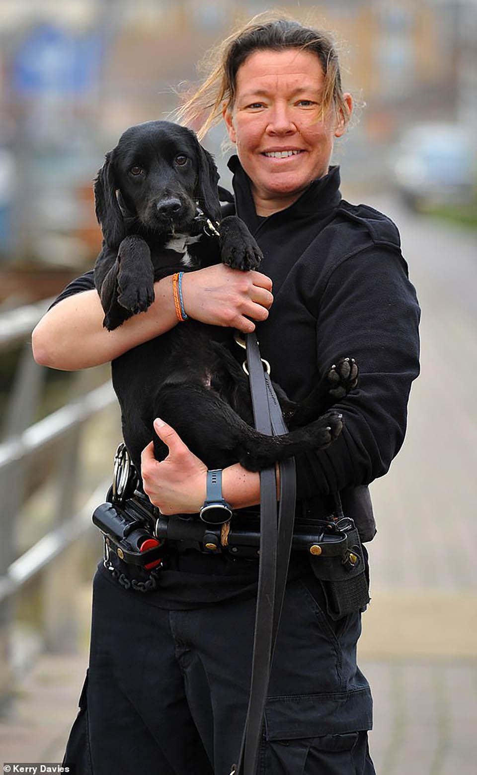 Perro rastreador de la policía