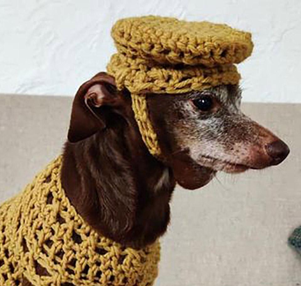Sombrero perrito