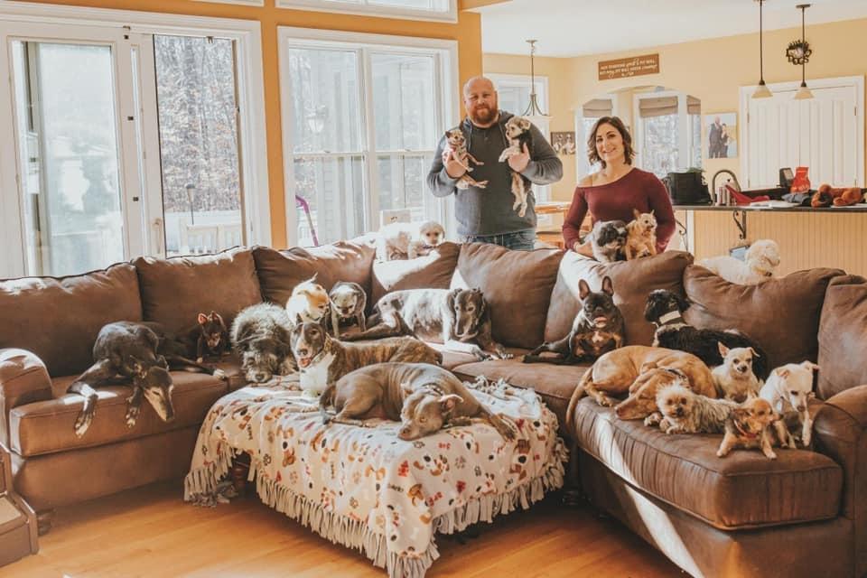 familia con 21 perros