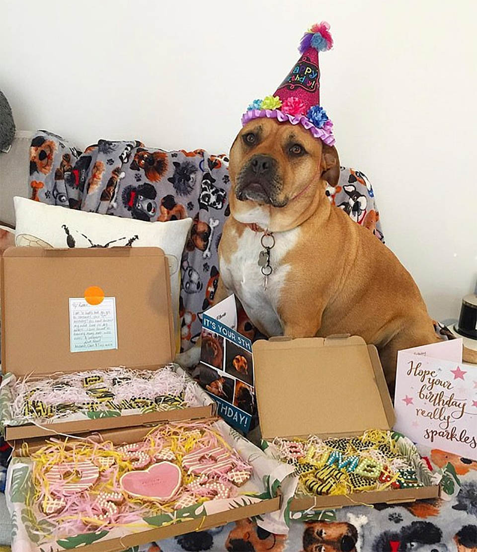 Cumpleaños Bumble