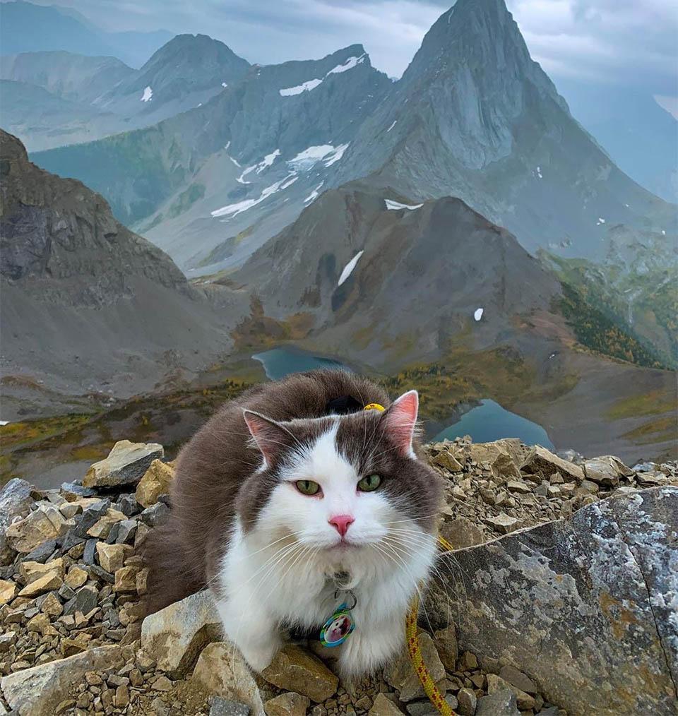 Gary en las montañas