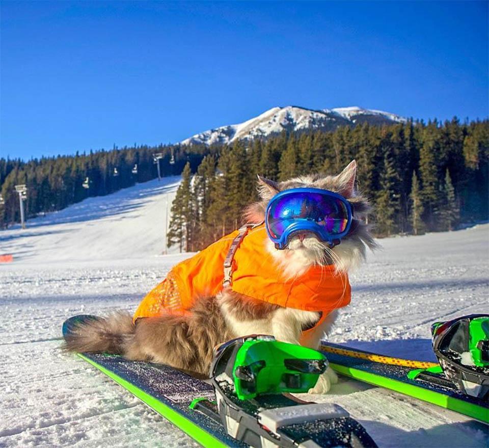 Gary esquiando
