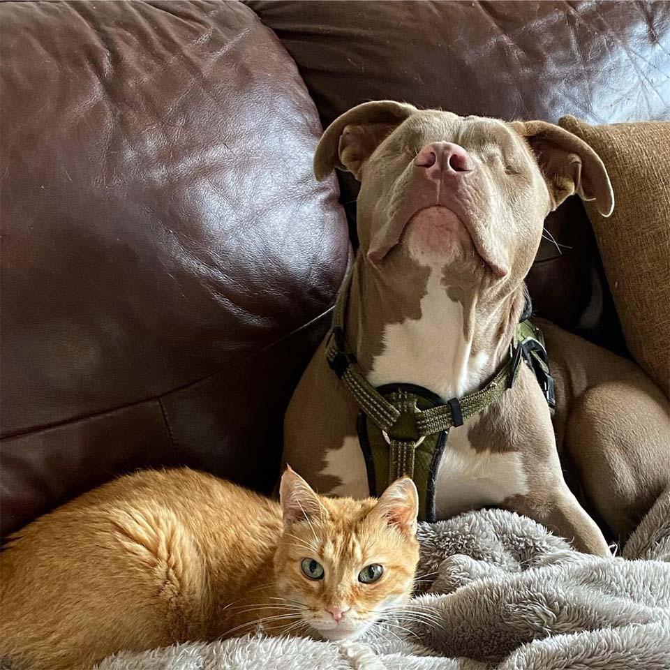 Jude y Oscar