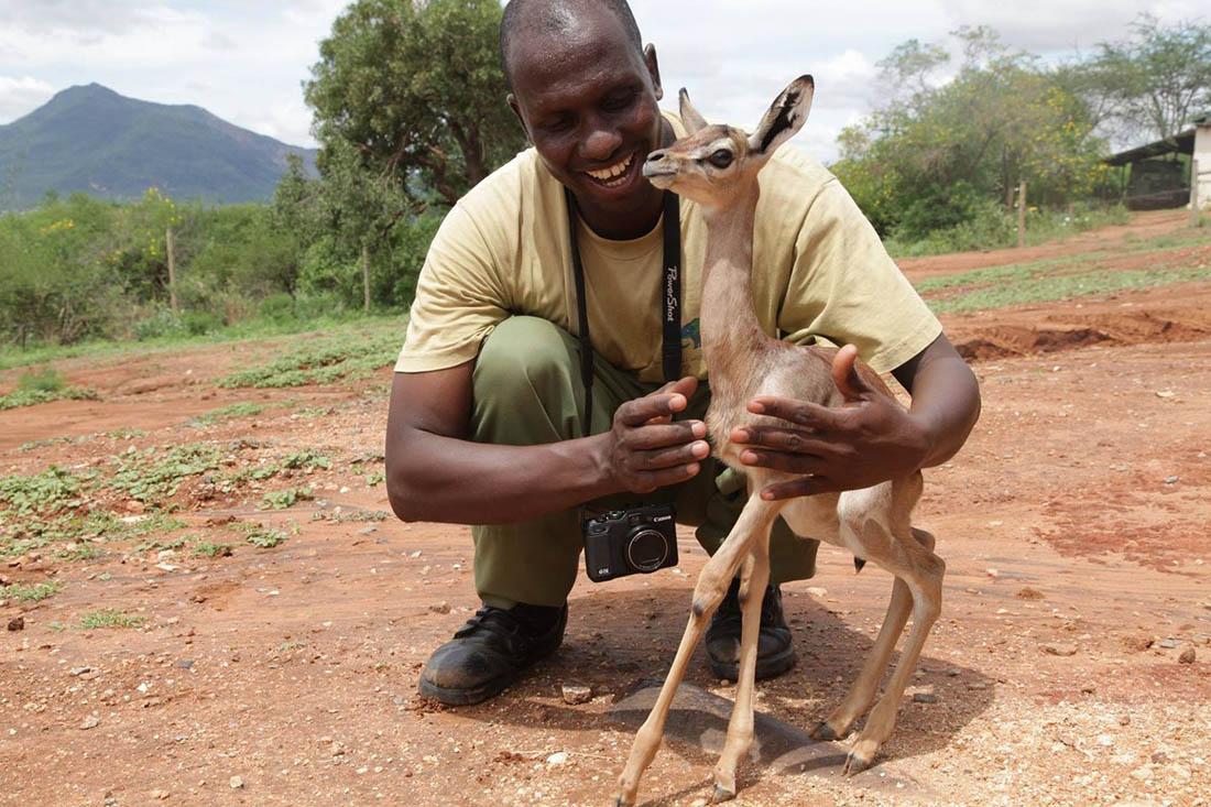 Pequeño animal y su cuidador