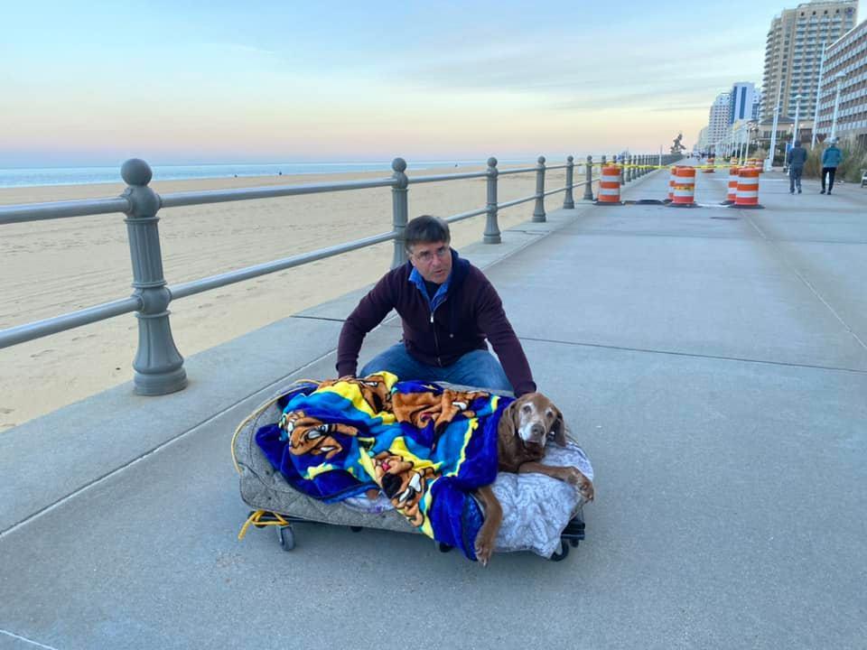 Hombre construye una cama móvil para su perro mayor