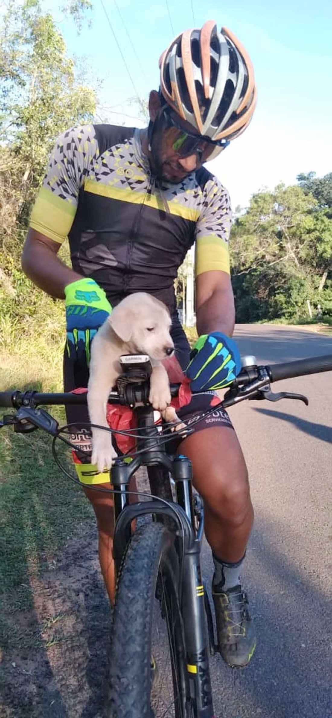 Ciclista ve a un cachorro en la carretera