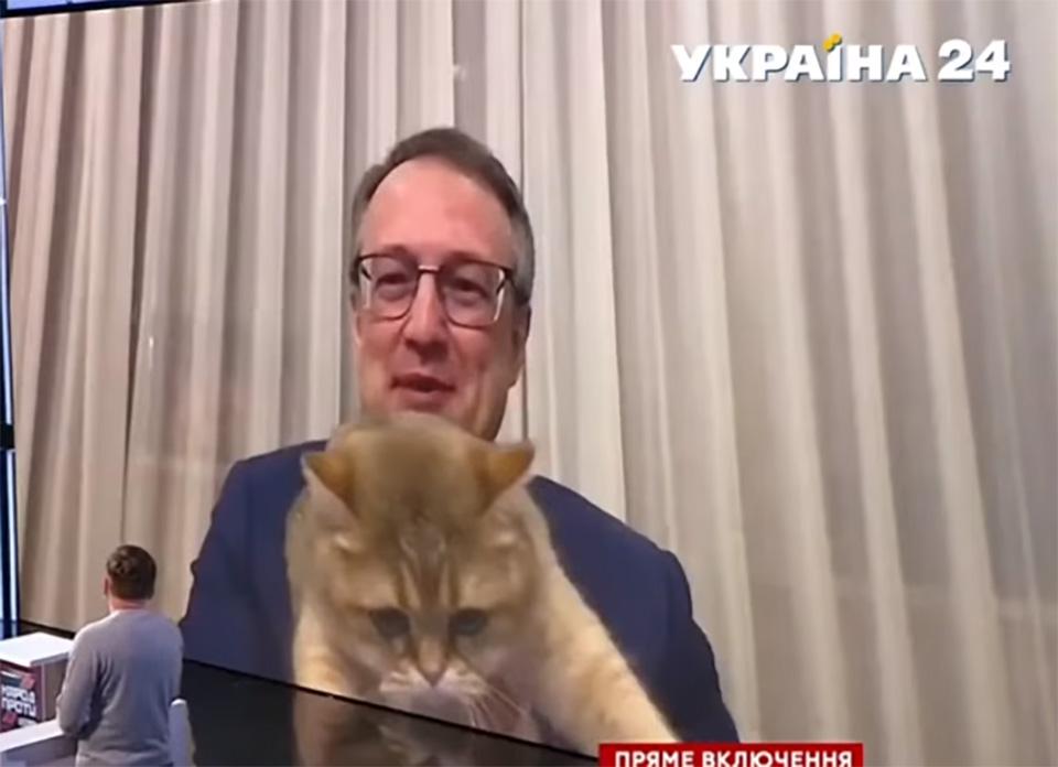 Gato entrevista con funcionario