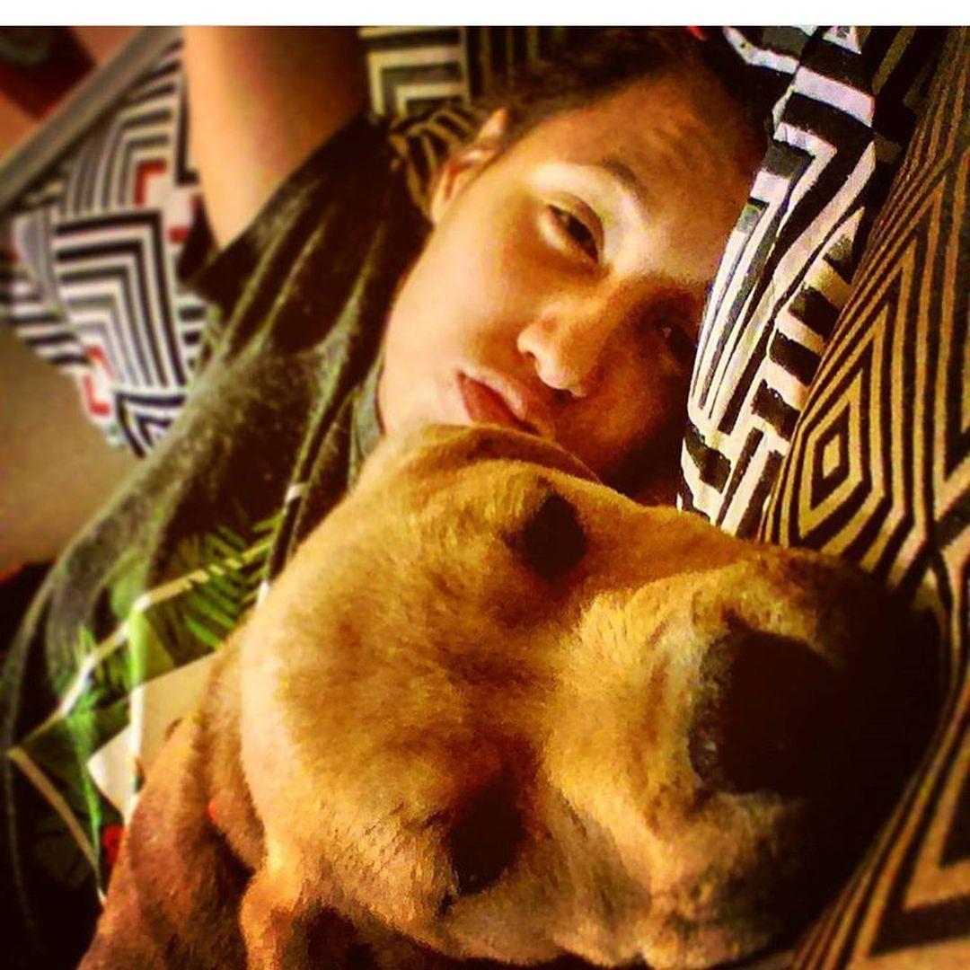 Mujer busca adoptar un perro de refugio