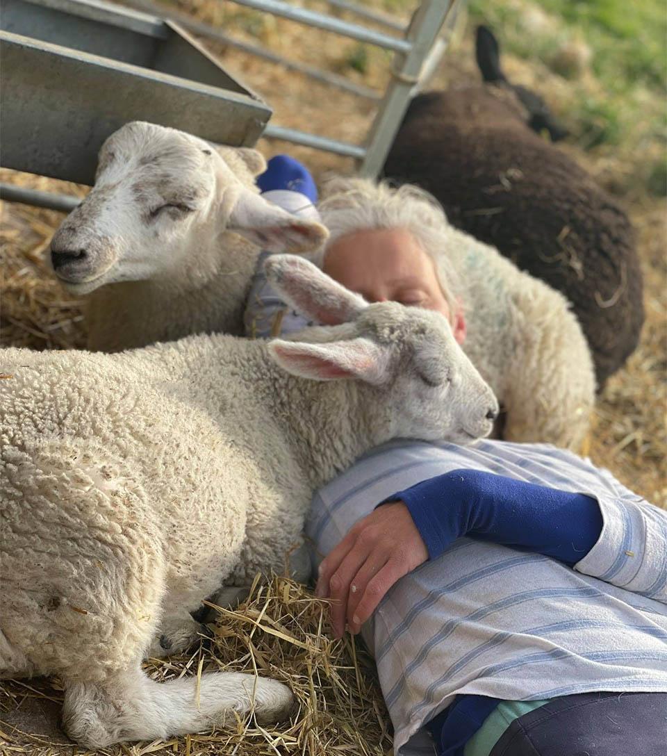Alexis entre ovejas