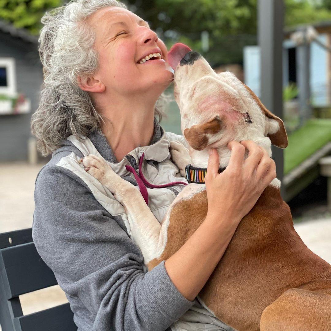 Centro de rescate está buscando voluntarios para abrazar perros