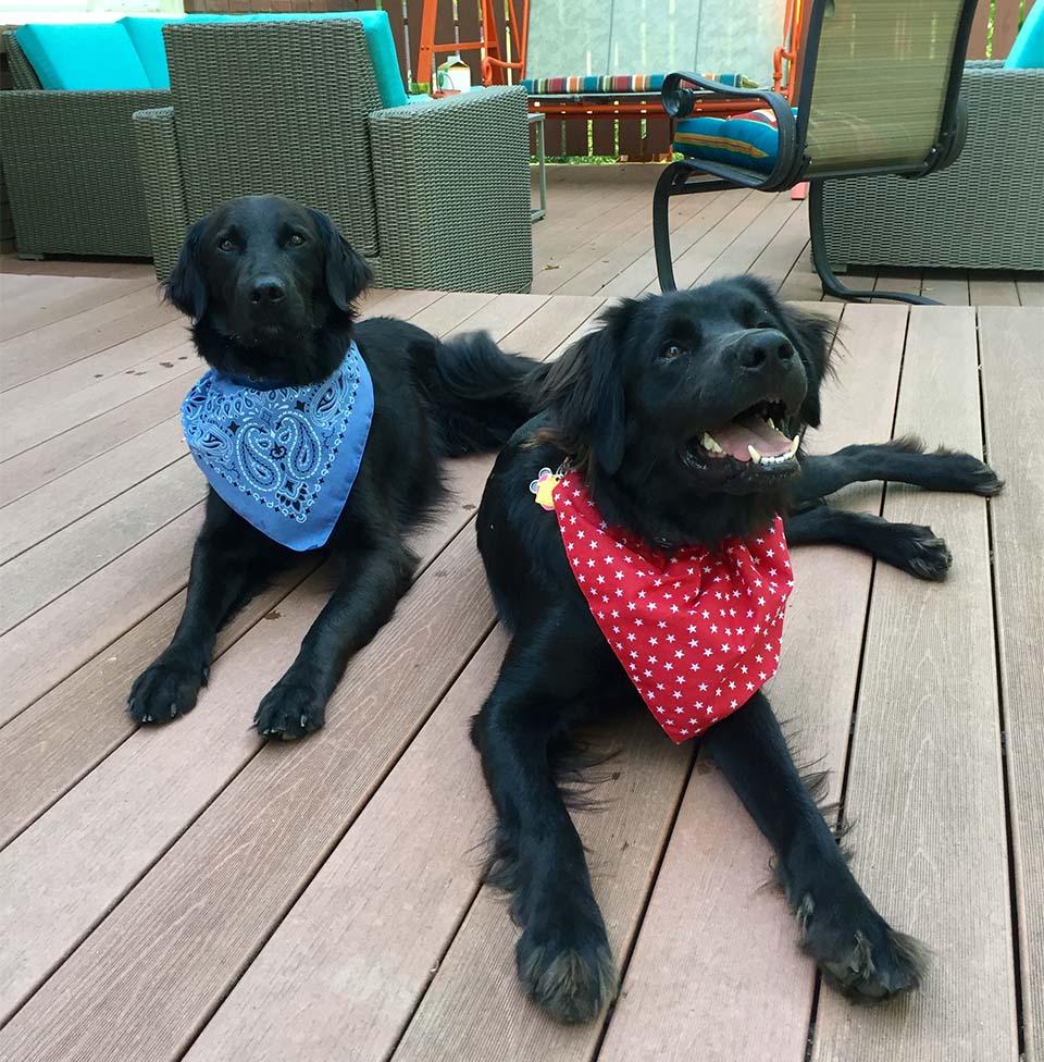 Edgar y Oscar