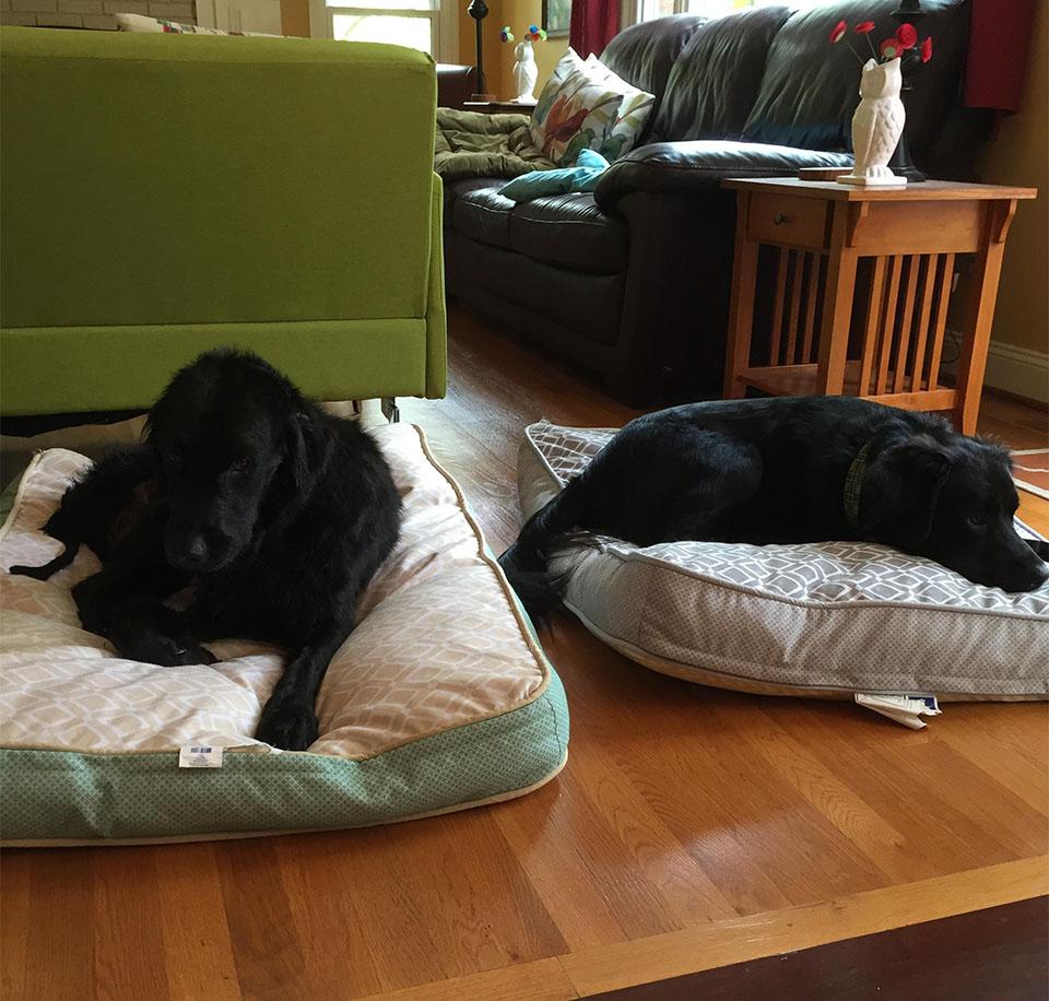 Edgar y hermano