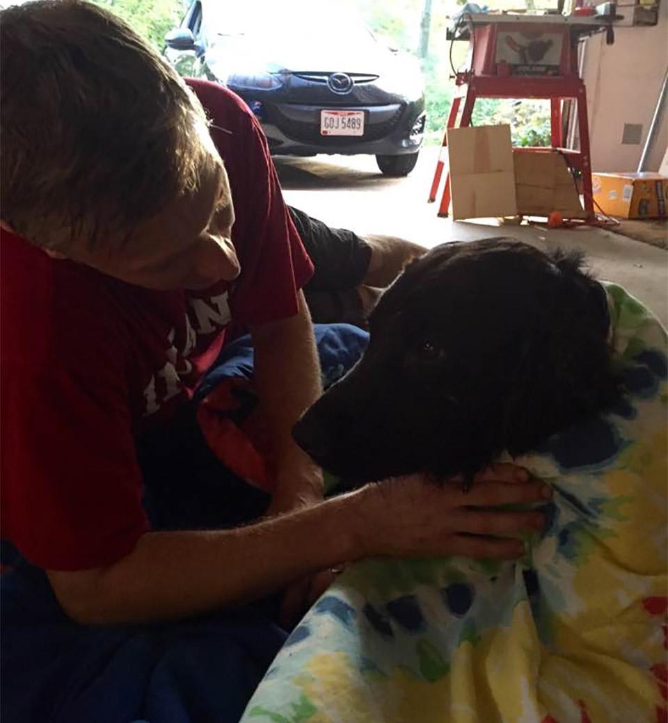Familia encuentra perro perdido