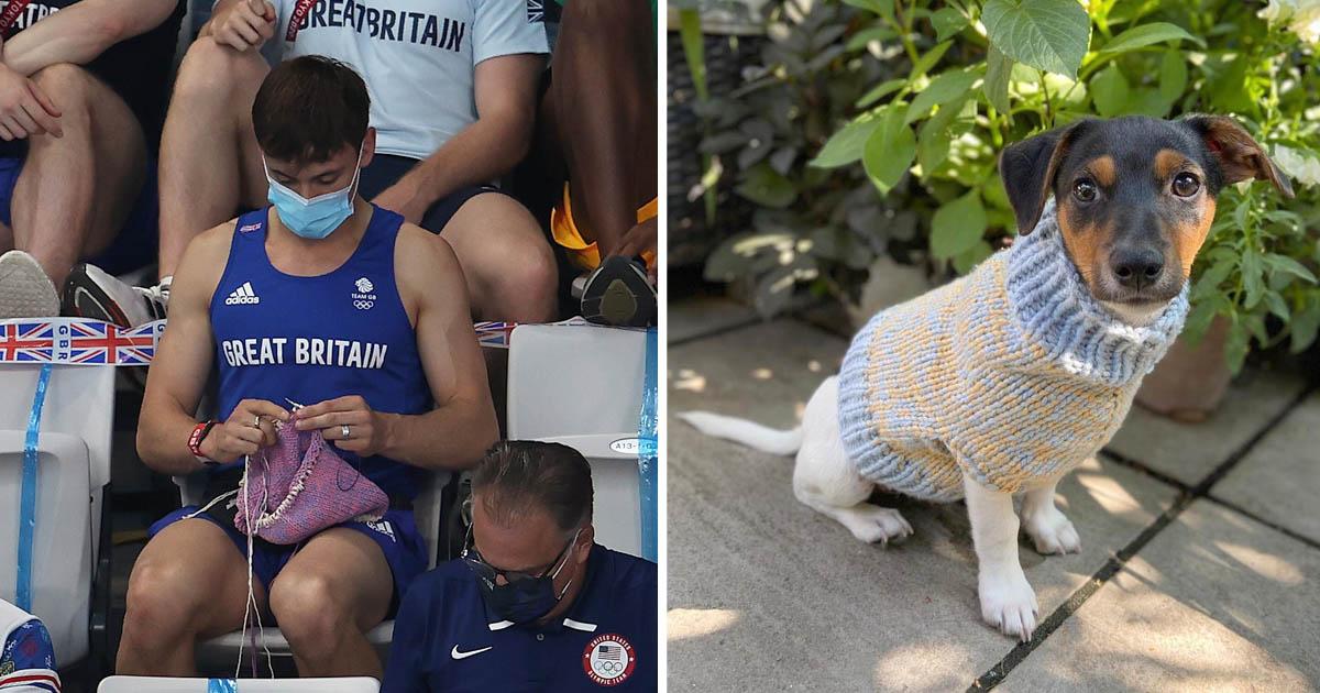 Medallista captado tejiendo suéter perro