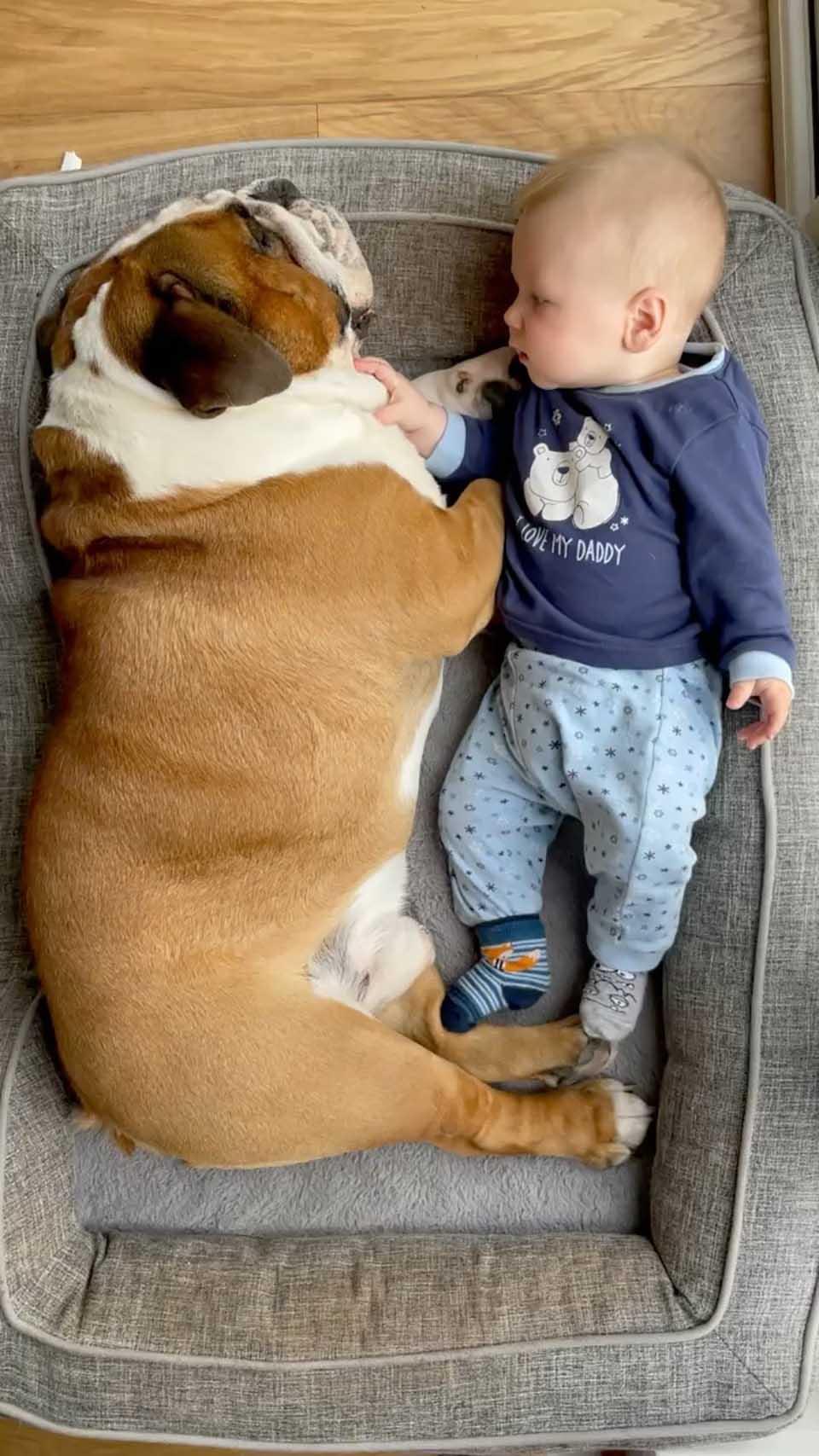Perrito y bebé juntos