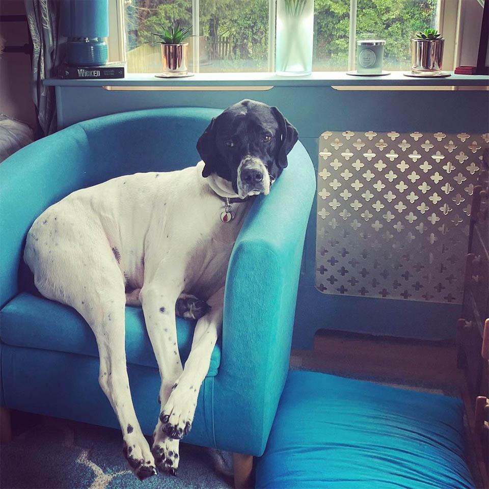 Spock en sofá